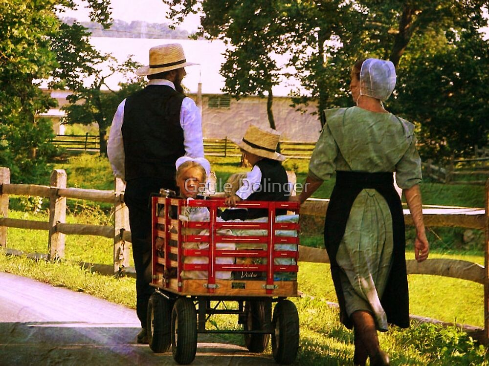 The Red Wagon by Gayle Dolinger
