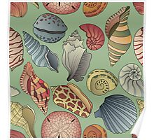 Vintage Seashell Pattern Seamless Poster