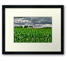 Wisconsin Dairyland Framed Print