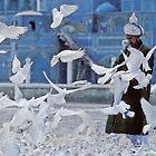 Man and a white dove, Afghanistan by yoshiaki nagashima