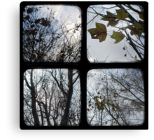 Winter of Discontent - TTV Canvas Print
