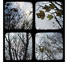 Winter of Discontent - TTV Photographic Print
