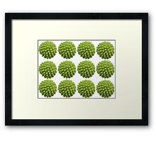 A Puffball Pattern Framed Print