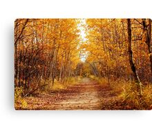 Autumn on the Harte Trail Canvas Print