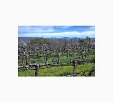 Vines in winter. Napa California. Unisex T-Shirt