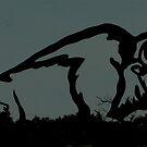 In Silhouette by Larry Trupp