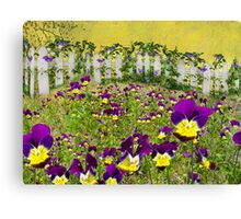 Violets In Washington Canvas Print