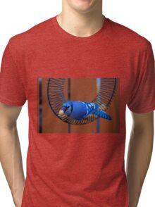 BlueJay @ the Feeder Tri-blend T-Shirt