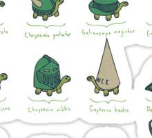 A Study of Turtles Sticker