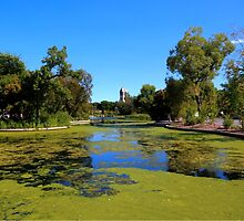 THE DUCK POND by Larry Trupp