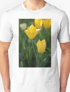 Yellow Crown Tulips Unisex T-Shirt