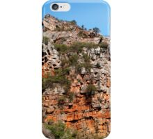 Morialta Conservation Park 2 iPhone Case/Skin