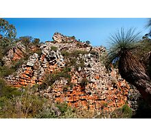 Morialta Conservation Park 2 Photographic Print