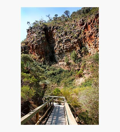Morialta Conservation Park Photographic Print