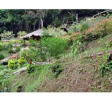 Chiang Mai 9 Photographic Print
