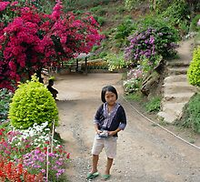 Chiang Mai 13a by Feesbay