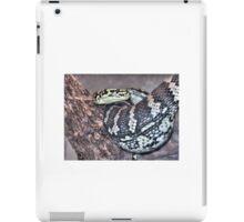 Viper Love iPad Case/Skin