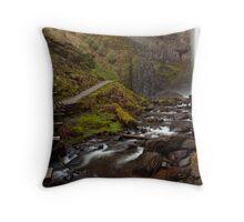 Latourell Falls ~ The Trail to White Ribbon Throw Pillow