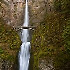 Multnomah Falls by Ritchie Belleque