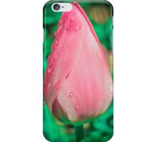 Pink tulip (Flowers collection) iPhone Case/Skin
