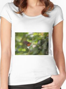 Monarch Butterfly On a Twig Women's Fitted Scoop T-Shirt
