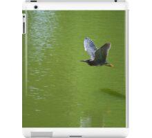 Green Heron In Mid Air iPad Case/Skin