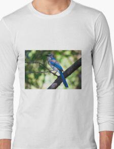 Scrub J Closeup Long Sleeve T-Shirt