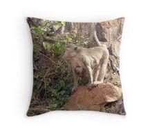 Wild monkey and baby Throw Pillow