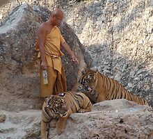 Monk with the Tigers by Feesbay