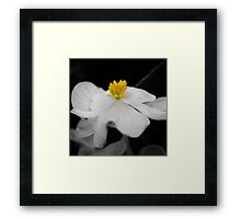 Dance Me To The End Of Love Framed Print