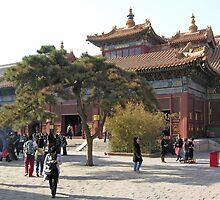 Main courtyard, Lama Temple, Beijing, China by Philip Mitchell
