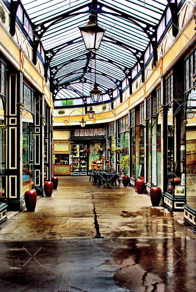 Arcade by Catherine Hamilton-Veal  ©