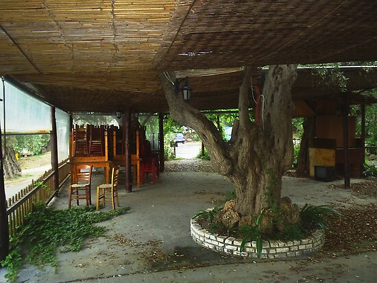 ABANDONED TAVERNA. THASSOS GREECE. by ronsaunders47