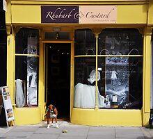 Rubharb & Custard by Karen E Camilleri