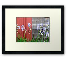 Weeks Boatyard Iris Patch Framed Print