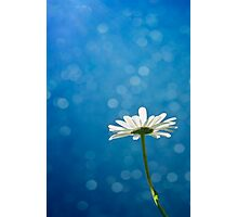 Blue and white Photographic Print