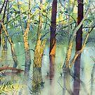 Treeflections, Skipwith Common by Glenn Marshall