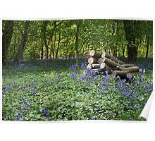 Oxfordshire wood Watlington oxford Poster