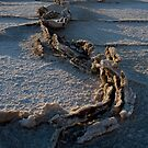 Salt Formations, Badwater Basin by Rick Ferens