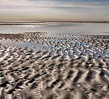 Patterns on the North Sea Beach by Adri  Padmos