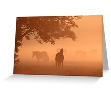 Horses in the fog Greeting Card