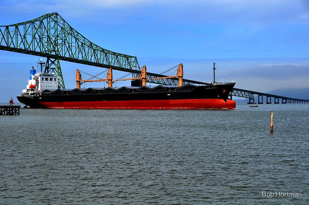 My Ship Has Finally Come In! by Bob Hortman