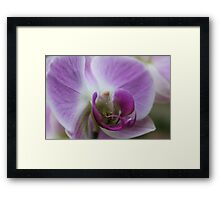 Come into my Purple World - JUSTART © Framed Print