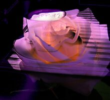 Coffee & Rose. by Vitta