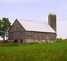 Old Barn on a Hill by RandiScott