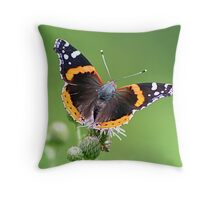 Red Admiral Butterfly Throw Pillow
