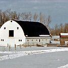 A Winter Scene near Edmonton, Alberta, Canada by Adrian Paul