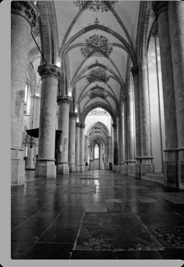 Grote Kerk, Breda, Netherlands by Lenka