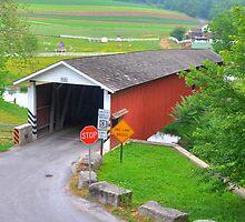 Jackson's Saw Mill Covered Bridge by Monte Morton