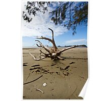 """Tree Wrecked"" after Cyclone Ului Poster"